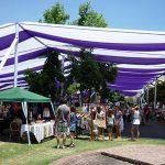img137-1-150x150 Toldos para fiestas en Santiago, al mejor precio.