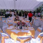 img113-150x150 Fundas de sillas para eventos. (10)