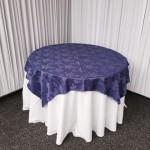 FullSizeRender-1-150x150 Alquiler de mesas, mesones en Santiago, al mejor precio (2)
