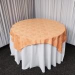 FullSizeRender-3-150x150 Alquiler de mesas, mesones en Santiago, al mejor precio (2)
