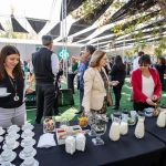 IMG-20190415-WA0010-150x150 Arriendo Toldos para eventos Santiago (10)