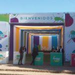 casa-piedra-2-150x150 Renta de carpas en Santiago, al mejor precio.